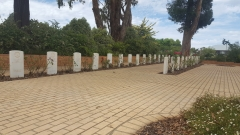 ANZAC War Cemetary Cowra NSW