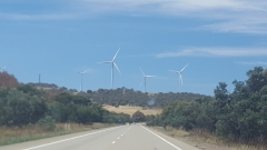 Windmills on the Hume Highway